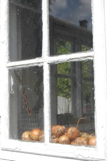 kijkend in door een oud raam op geoogste uien drogen in het zonlicht en de lucht en een schoorsteen worden weerspiegeld in de rechterbovenhoek venster. - meerdere lagen effect stockfoto's en -beelden