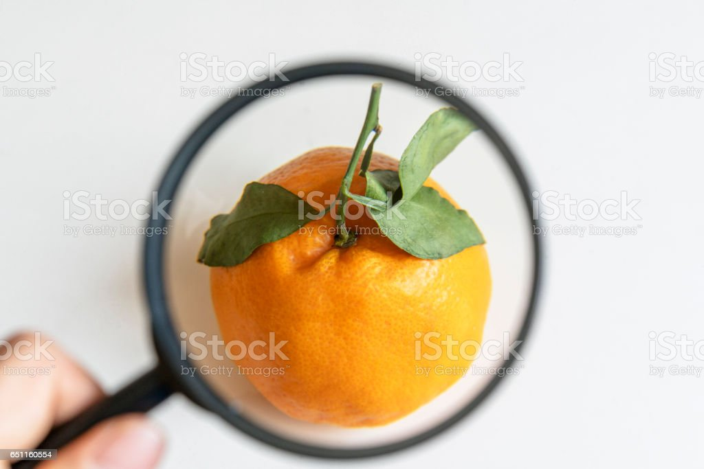 looking into an orange with magnifier stock photo