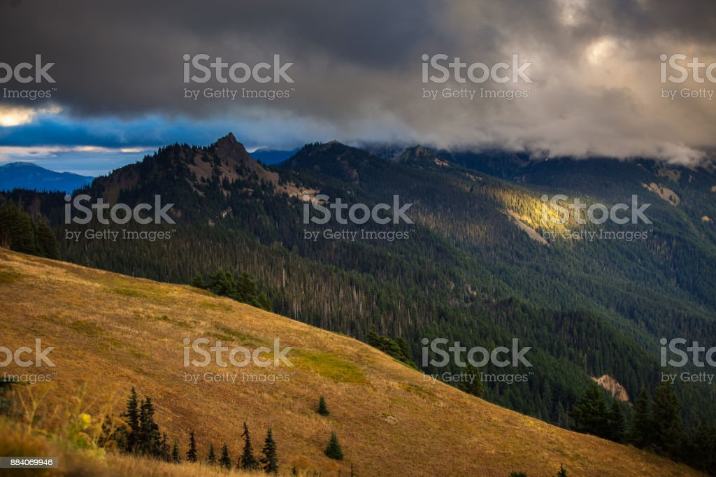 Thick cloud pouring over jagged peaks in Olympic National Park, with...