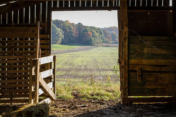 Royalty Free Barn Door Pictures Images And Stock Photos