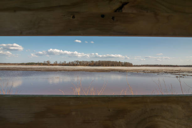 Looking out a duck blind at the beautiful sky, grasslands, and wetlands on a late winter / early spring day in the Crex Meadows Wildlife Area in Northern Wisconsin Looking out a duck blind at the beautiful sky, grasslands, and wetlands on a late winter / early spring day in the Crex Meadows Wildlife Area in Northern Wisconsin hunting blind stock pictures, royalty-free photos & images