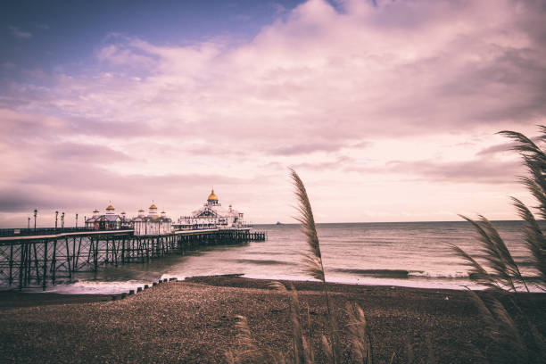 Looking out along the beach next to Eastbourne Pier Looking out along the beach next to Eastbourne Pier southeast england stock pictures, royalty-free photos & images