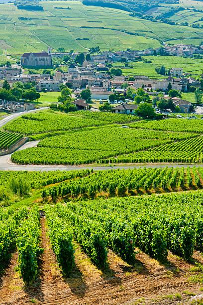 Bourgogne, France - Photo