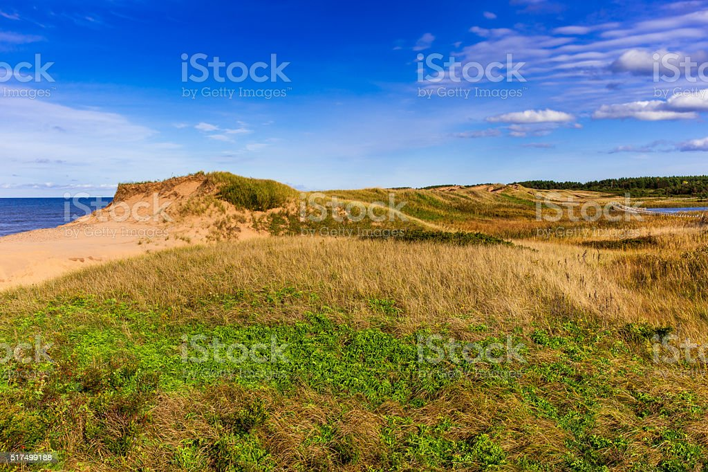 Looking over the sand dunes stock photo