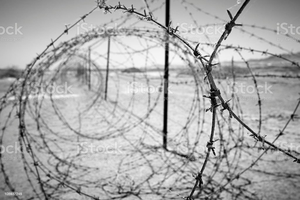 Looking through circular barbed wires stock photo