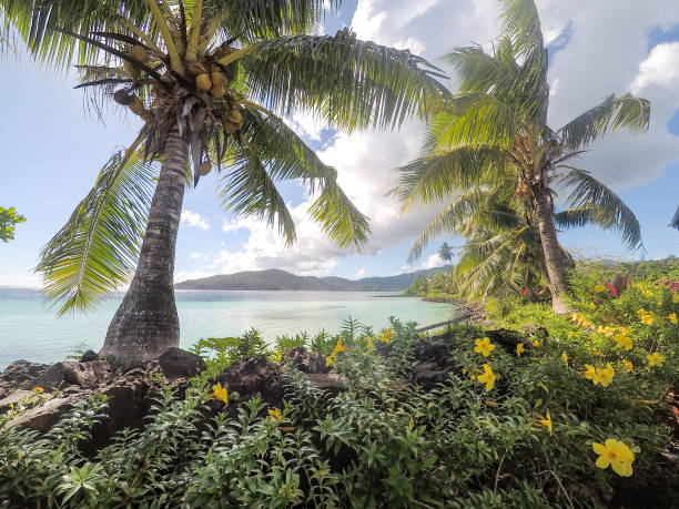 Looking through lush foliage, tropical flowers and coconut palm trees to the South Pacific Ocean on Upolu Island, Samoa stock photo