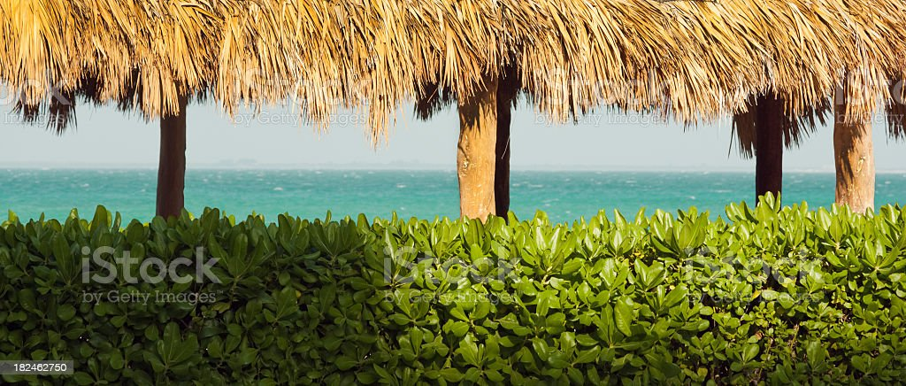 Looking through Palapa for Panoramic View of Caribbean Sea, Mexico royalty-free stock photo