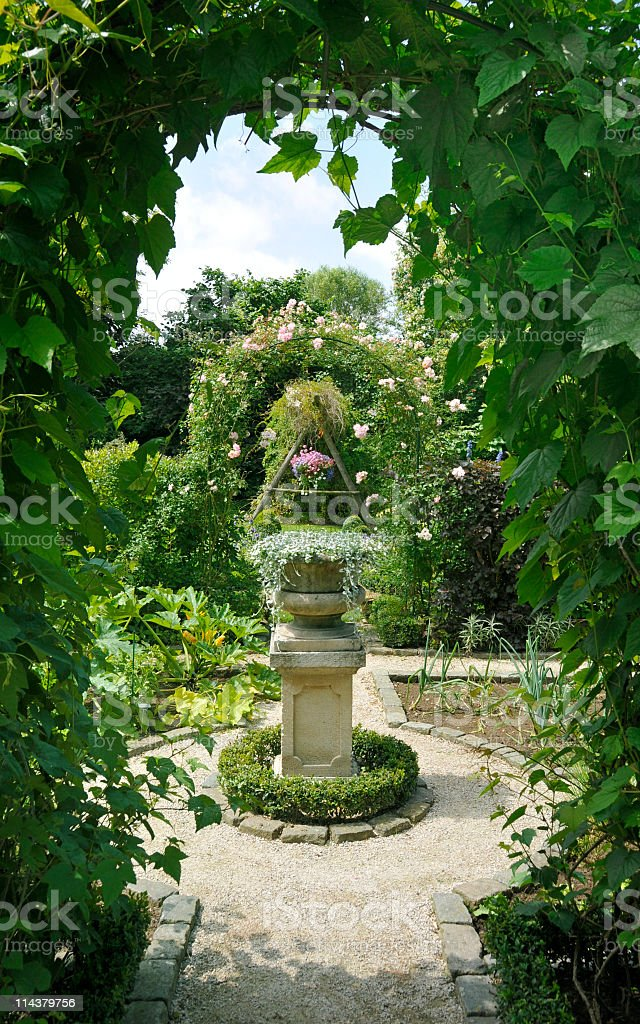Looking through the hedge royalty-free stock photo