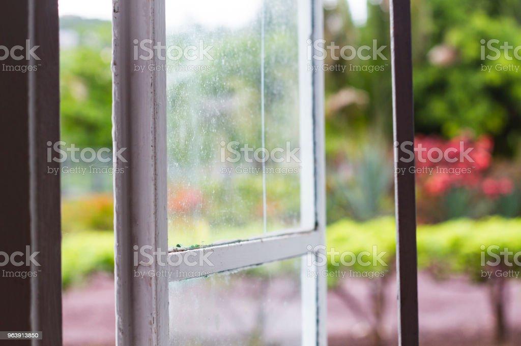 Looking through Window at Jungle - Royalty-free Caribbean Stock Photo