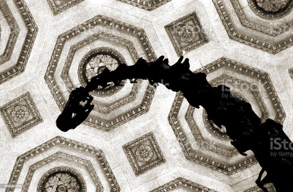 Looking up at a Dinosaur Skelton stock photo