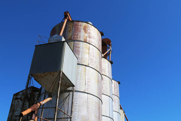 looking up at a rusty old working agricultural feed grain and corn silo building against a blue sky in rural heartland america perfect for industry farming and commercial agriculture marketing stock photo