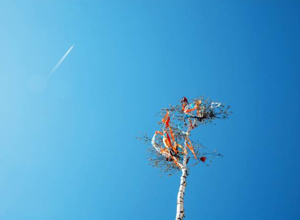 Blick nach oben auf Mai-Pol und Flugzeug – Foto