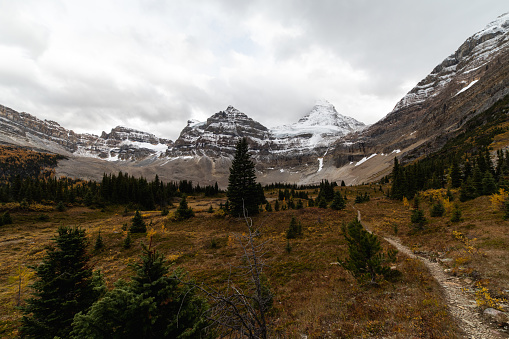 low angle view of a tall mountain with snowy top hidden behind the clouds on a sunrise with a trail and pine trees in the foreground