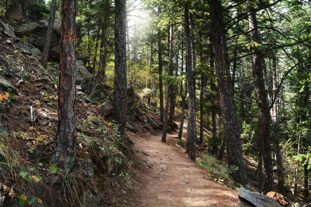 lookout mountain on a calm fall day in colorado - deign stock pictures, royalty-free photos & images