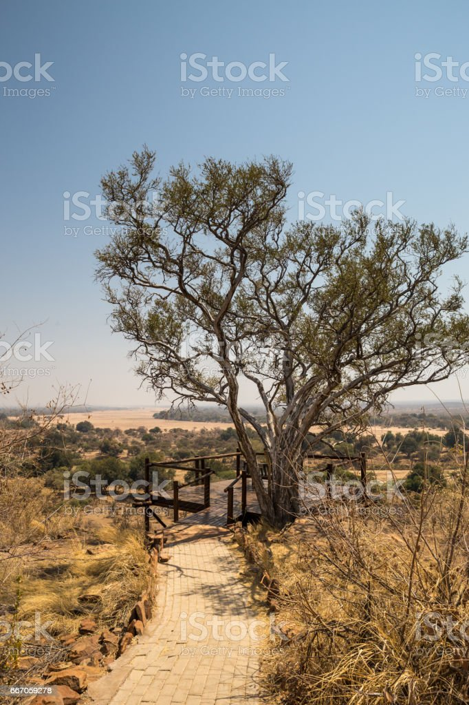 Lookout Point in Mapungubwe National Park, South Africa stock photo