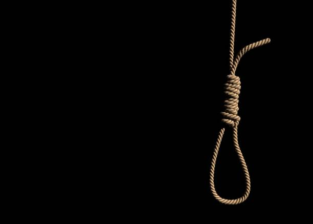 loop rope with slipknot. - noose stock photos and pictures