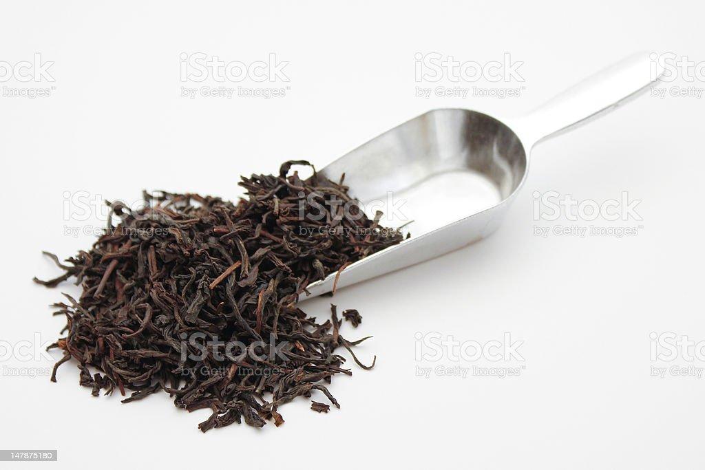 Loose Tea Scoop royalty-free stock photo