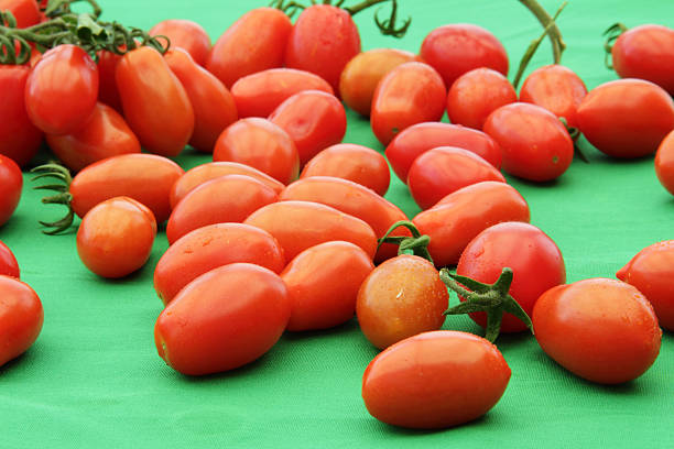 loose tomatoes stock photo