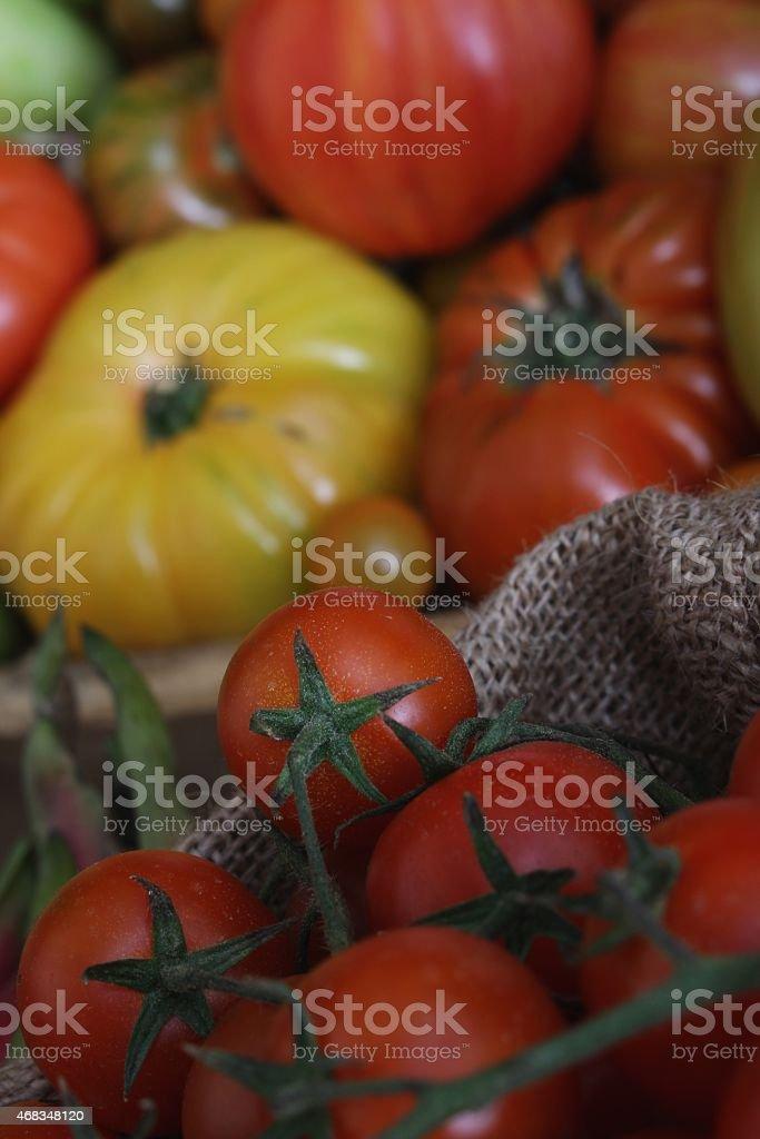 loose vine tomatoes royalty-free stock photo