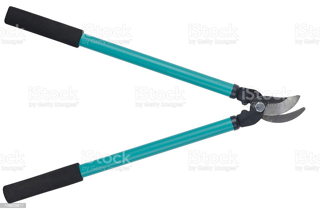 Loppers stock photo