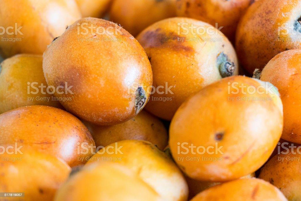 Loquats stock photo