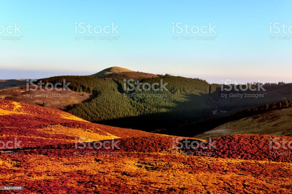 Lord's Seat above Thornthwaite Forest stock photo