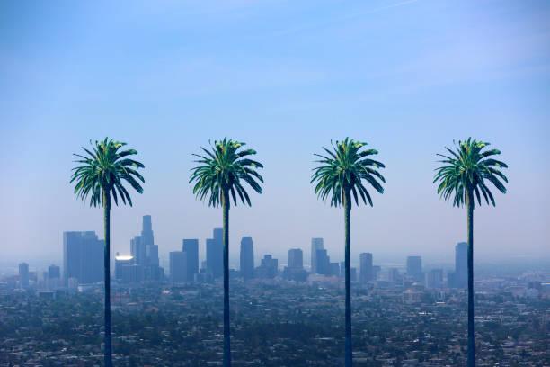 Los Angeles California Skyline Palm Trees LA Skyline and palm trees hollywood california stock pictures, royalty-free photos & images
