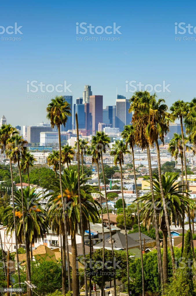 Los Angeles, California, USA downtown skyline and palm trees in foreground stock photo