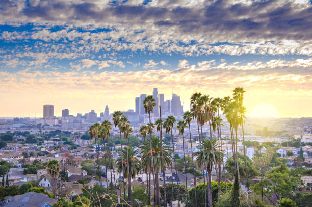 Los Angeles downtown Beautiful sunset of Los Angeles downtown skyline and palm trees in foreground hollywood california stock pictures, royalty-free photos & images