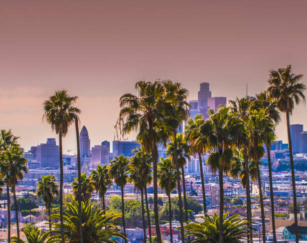 los angeles - san fernando valley stock photos and pictures