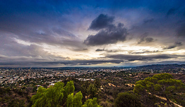 Los Angeles Skyline above the trees stock photo