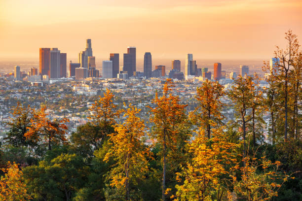 Los Angeles skyline at sunrise Los Angeles skyline at sunrise hollywood california stock pictures, royalty-free photos & images
