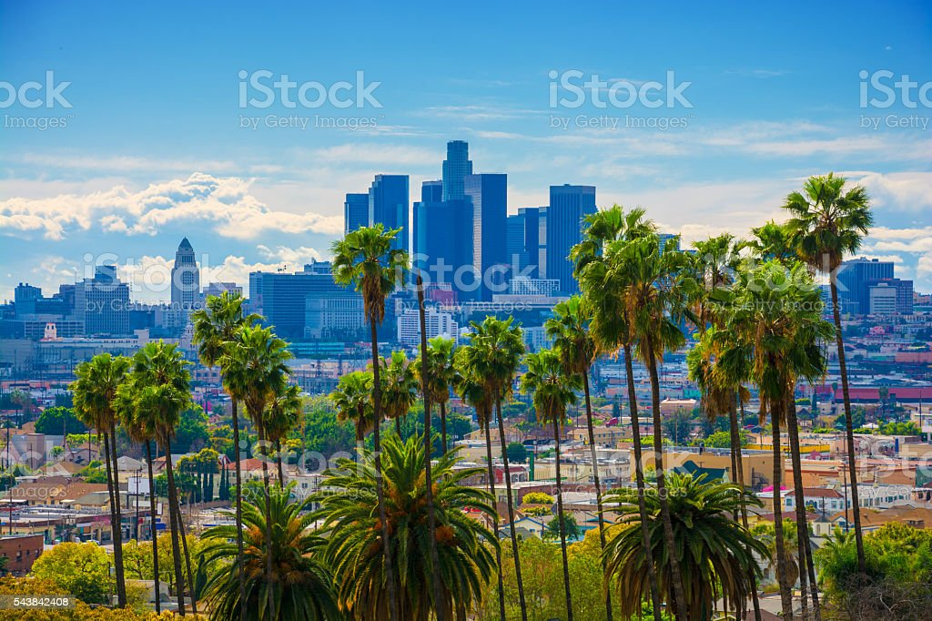Los Angeles Skyline Backlit Aerial with Vivid Green Palm Trees stock photo