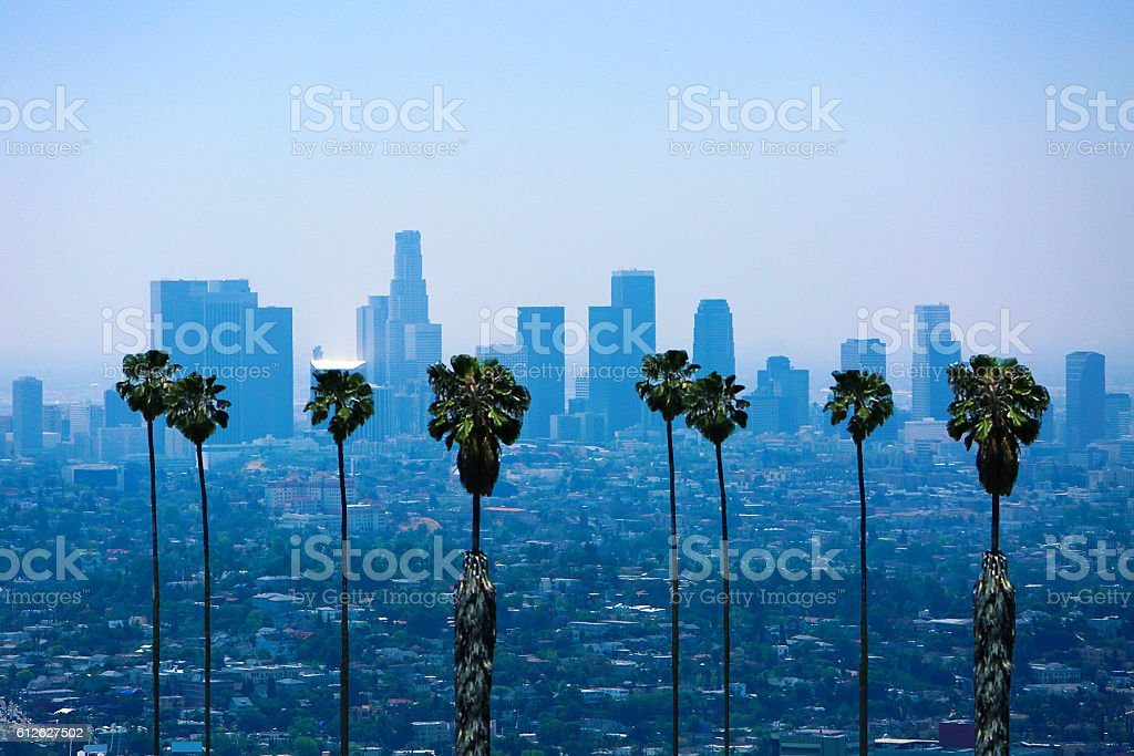 Los Angeles Skyline Palm Trees stock photo
