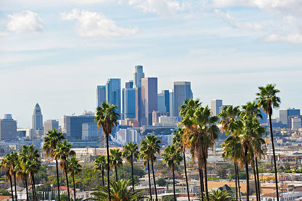 Los Angeles Skyline Los Angeles skyline on a partly cloudy day with a row of palm trees in the foreground. hollywood california stock pictures, royalty-free photos & images