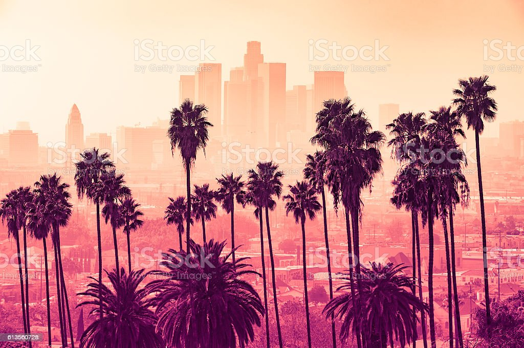 Los Angeles skyline with palm trees in the foreground royalty-free stock photo