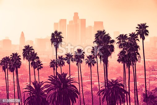 istock Los Angeles skyline with palm trees in the foreground 613560728