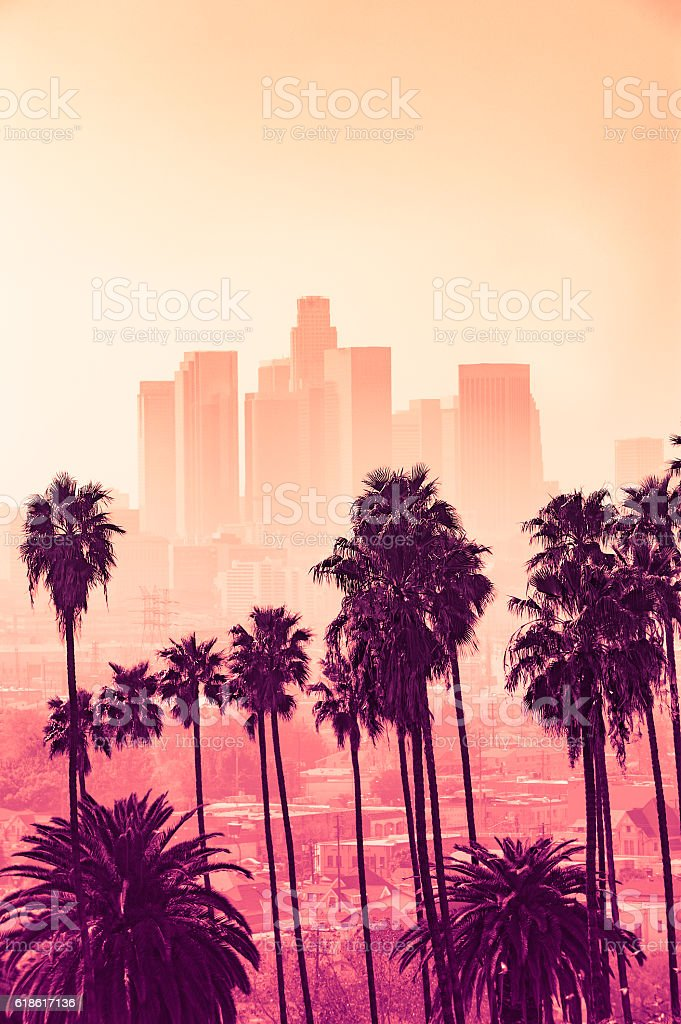 Los Angeles skyline with palm trees in the foreground stock photo
