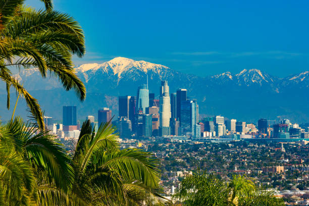 los angeles skyline with snow-capped mountains, framed with tropical-like palm trees - skyline mountains usa stock photos and pictures