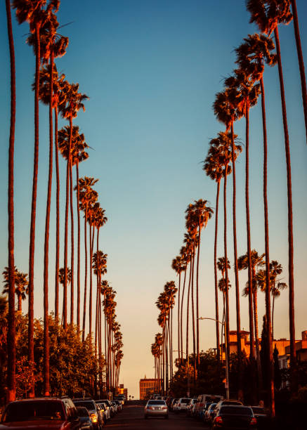 Los Angeles streets stock photo