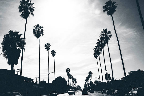 Los Angeles streets. Los Angeles traffic. hollywood california stock pictures, royalty-free photos & images