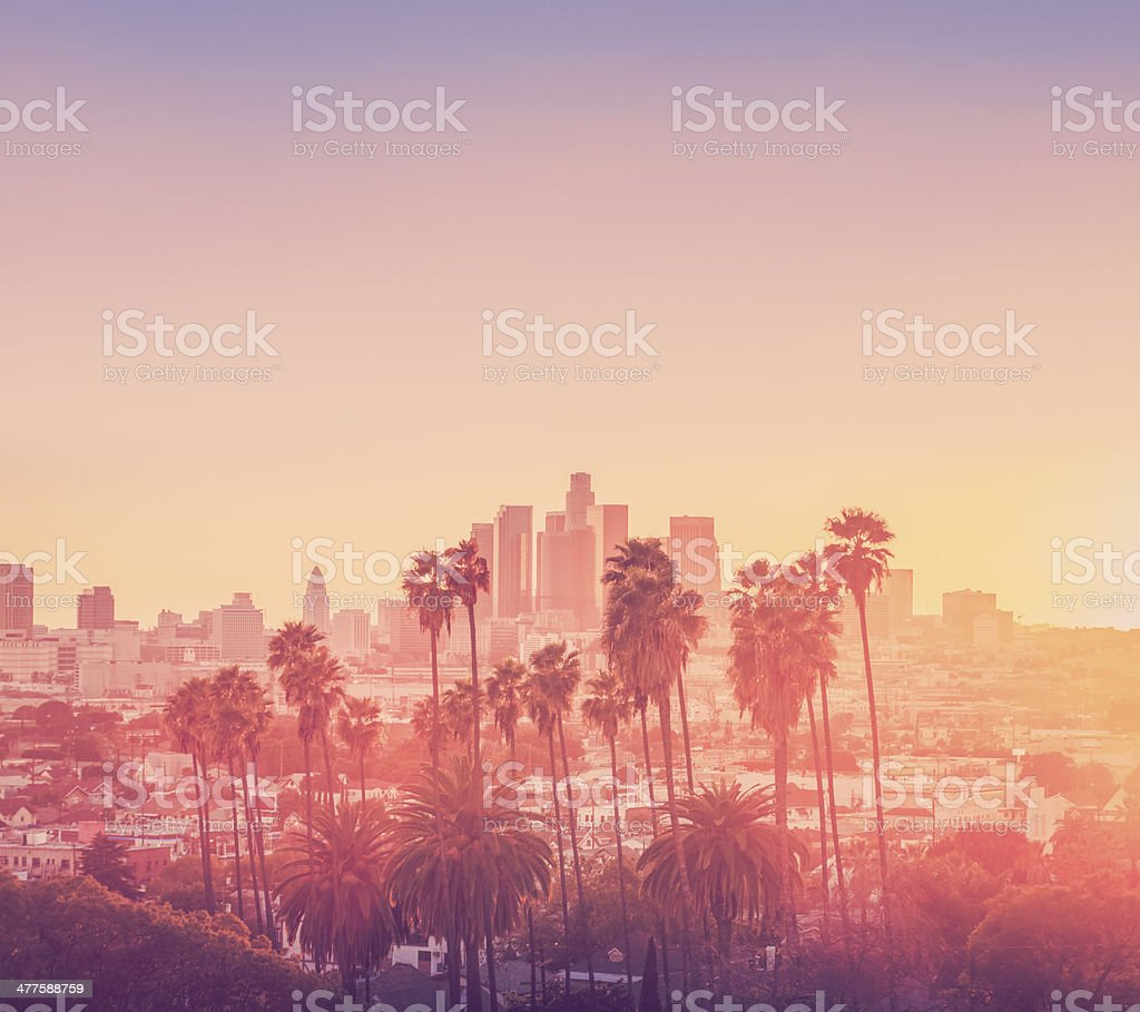 Los Angeles sunset scene with palm trees stock photo