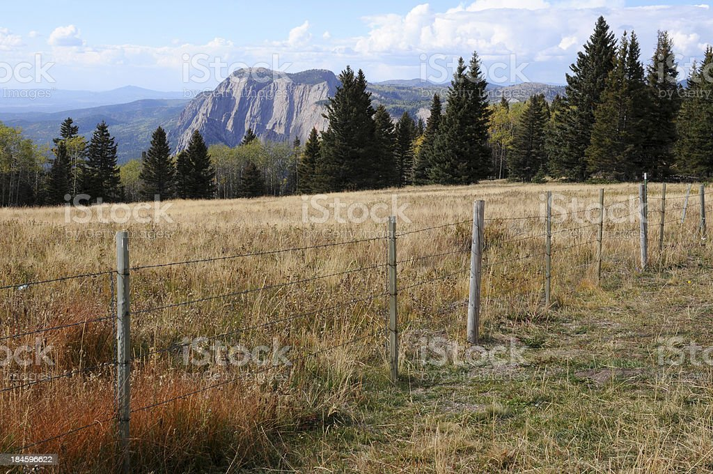 Los Brazos with fence stock photo