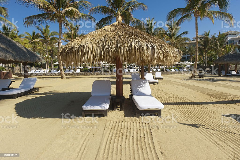 Los Cabos, Baja California, Mexico royalty-free stock photo