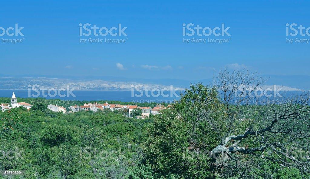 Losinj Island,Kvarner Gulf,adriatic Sea,Croatia stock photo