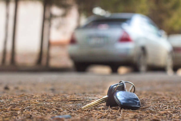 lost car keys on the fallen needles of blue spruce. back blur background bokeh lost car keys on the fallen needles of blue spruce. back blur background bokeh locksmith stock pictures, royalty-free photos & images