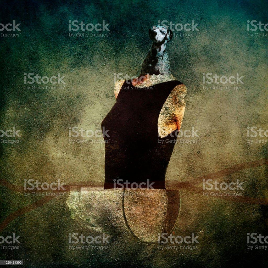 Lost Figurehead stock photo