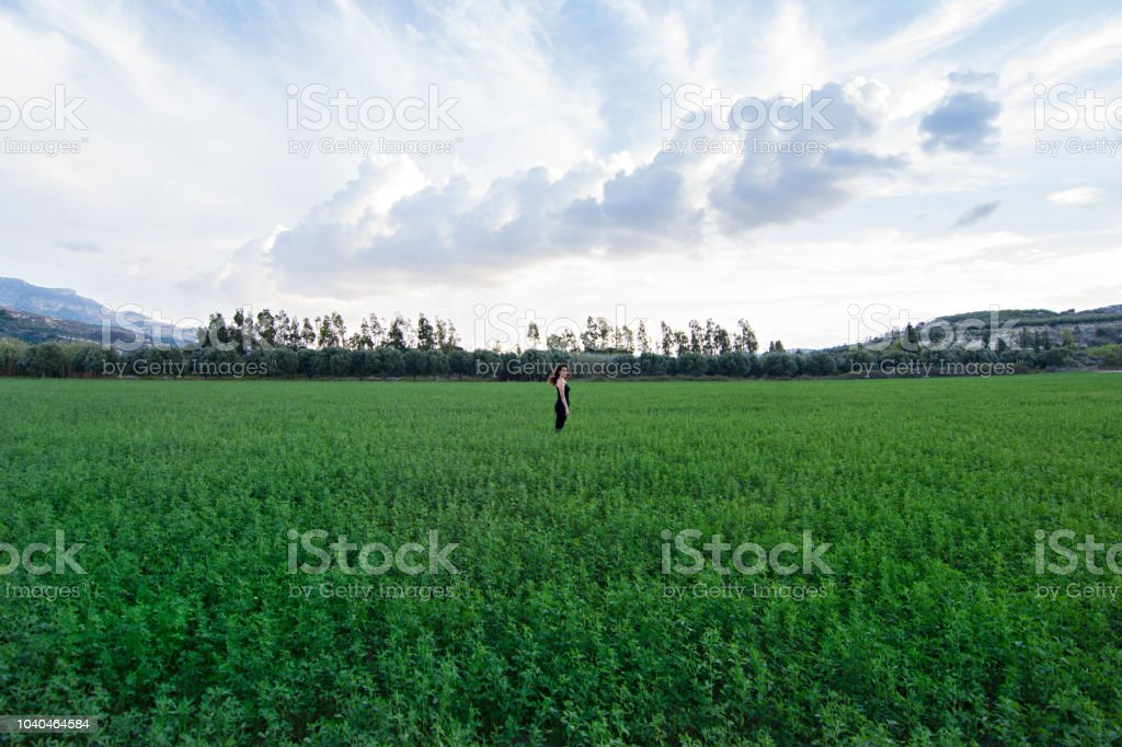 Lost in green stock photo