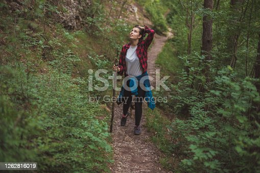 Centered view of a young hiker exploring the woods walking down the marked path. She's got a help of a stick she found nearby so she can overcome rough parts of the route. She's amazed by the view around her.