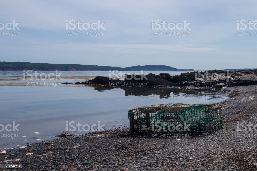A lost Lobster trap at the waters edge. stock photo